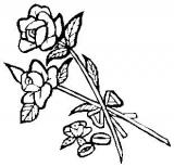 Motivstempel Rosen mit Eheringen